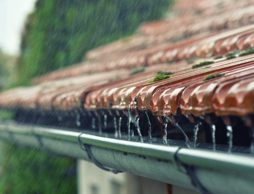 The Unintended Consequences of Rainwater and How to Take Action in Your Home
